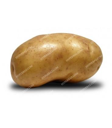 سیب زمینی خوب قیمت یک کیلو