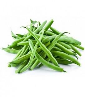 لوبیا سبز ممتاز قیمت هر کیلو