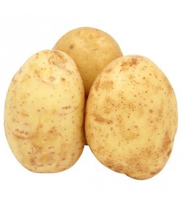 سیب زمینی درشت قیمت هر 2 کیلو