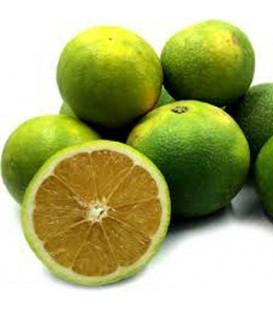 پرتقال سبز قیمت هرکیلو
