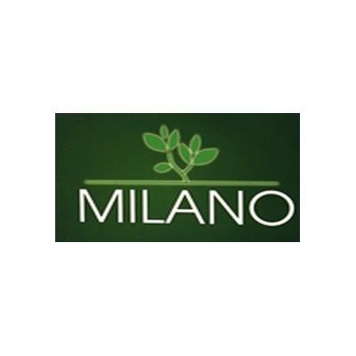 روغن زيتون بي بو سرخ کردني 1 ليتري میلانو Milano
