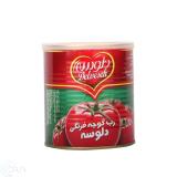 رب گوجه فرنگی 800 گرمی دلوسه