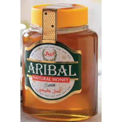 عسل بي موم شيشه ممتاز گون 800گرم آريبال