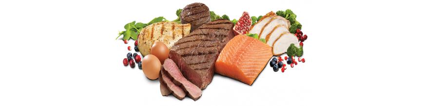 پروتئینی